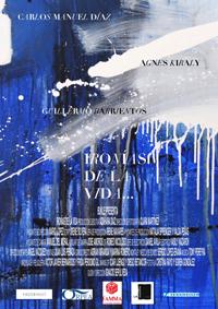 Ironiasdelavida_poster